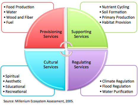 The four categories of ecosystem services, and examples of those services, as defined by the Millennium Ecosystem Assessment, 2005.