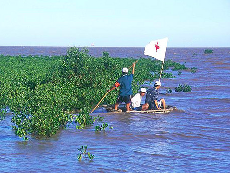 Red Cross volunteers monitor the growth of mangroves in Vietnam to reduce the effects of typhoons and large waves