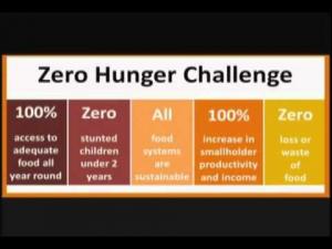 Graphic displaying the Zero Hunger Challenge spectrum of milestones